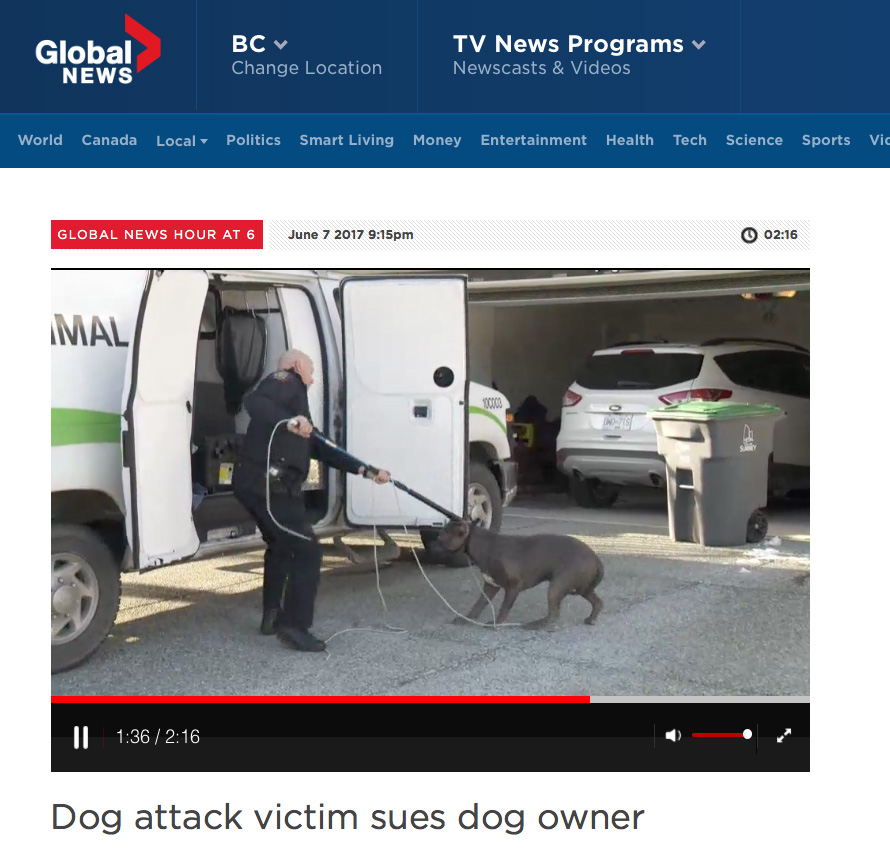Global News - Dog attack victim sues dog owner