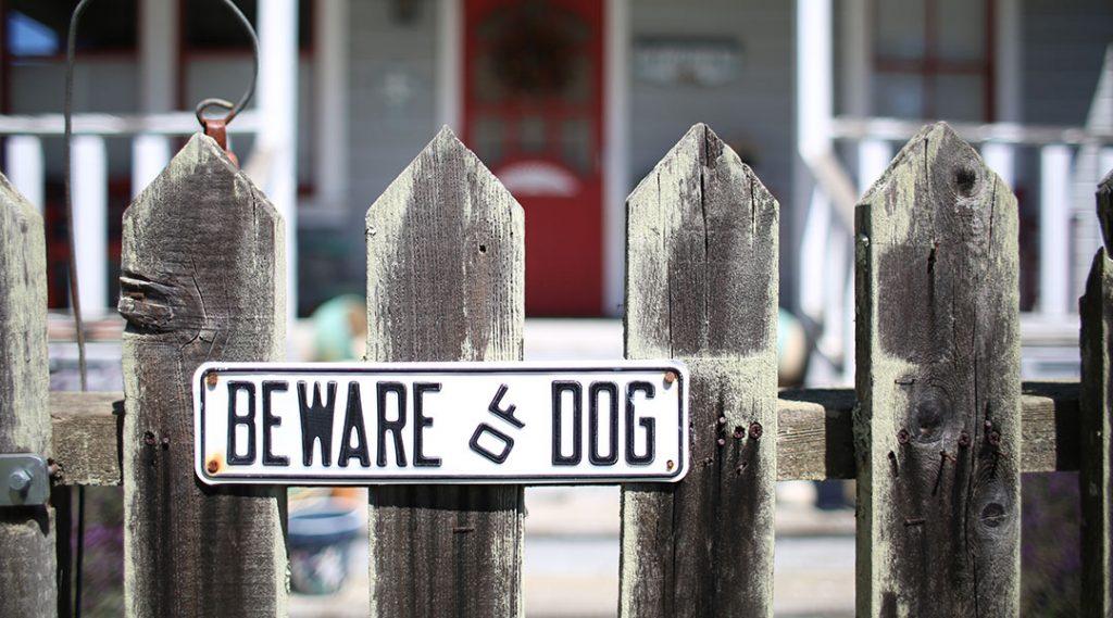 JMR Representing Victim of Vicious Dog Attack